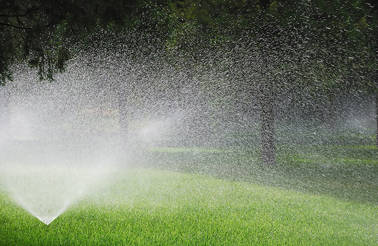 Sprinklers Watering Lawn
